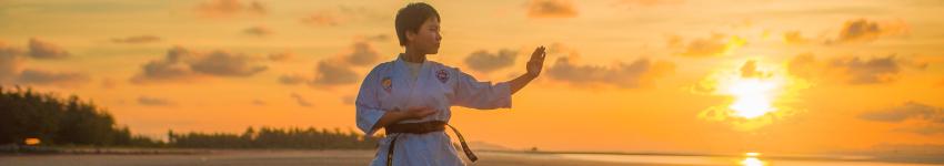 Metoda Jujitsu.