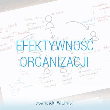 Efektywność organizacji