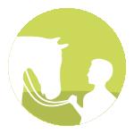 szkolenie-witalni-konie_ucza_ludzi